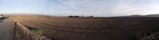 Newly plowed vineyard
