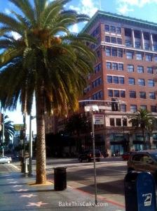 Date Palms on Hollywood Boulevard BakeThisCake