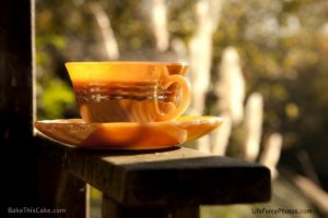 orange coffee cup by the river Photo by LifeForcePhotoscom for Bake This Cake