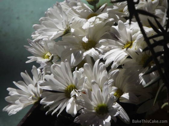 White Potted Daisies Bake This Cake