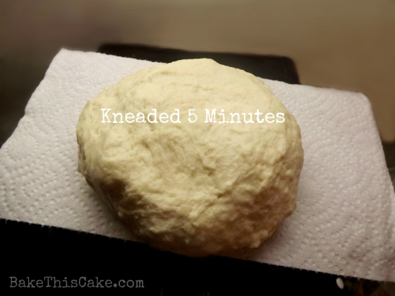 Bread Dough After 5 Mins Kneading BakeThisCake