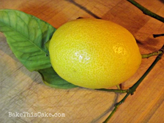 Fresh Lemon for Sour Cream Pound Cake Bake This Cake