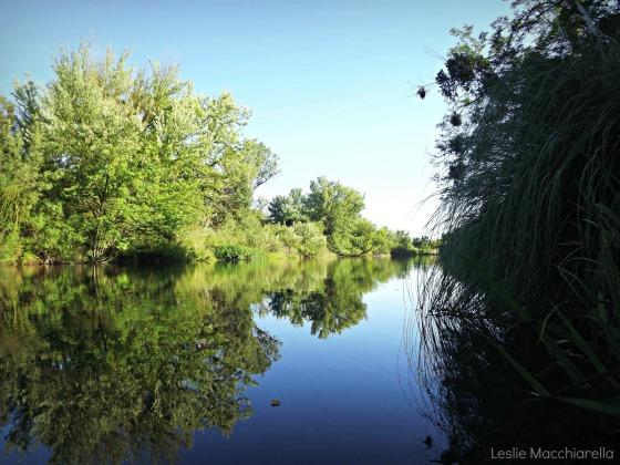 Merced River in the Summer photo by Leslie Macchiarella