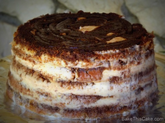 Flipped Tiramisu Opera Cake rock background Bake This Cake