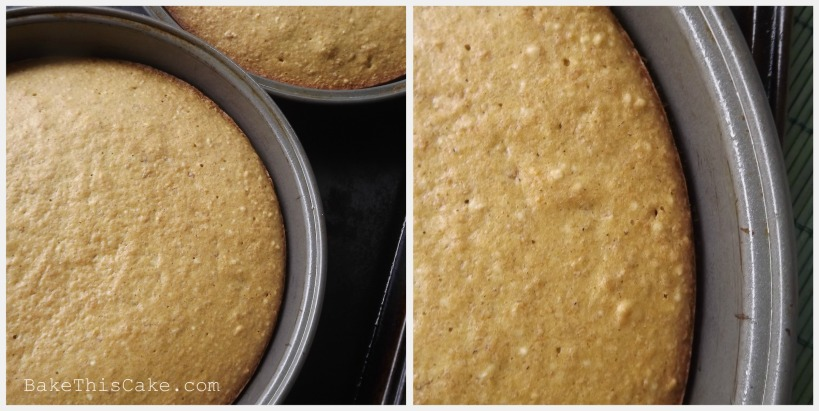 Breadcrumb Cakes recipe hot from the oven Bake this Cake