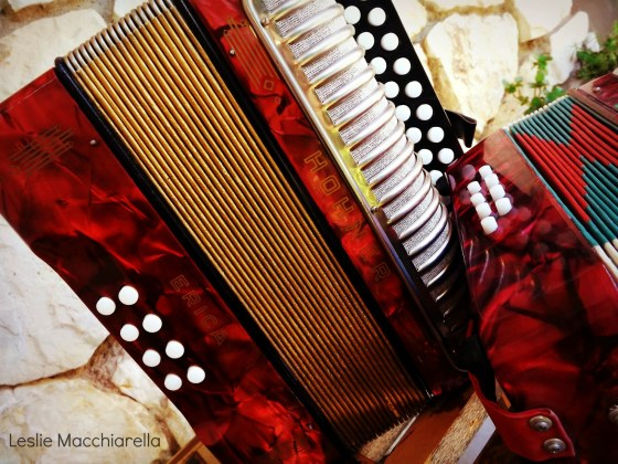 Red Concertinas photo by Leslie Macchiarella