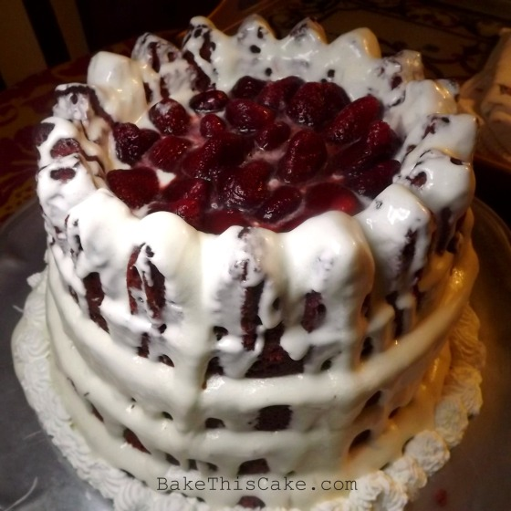 Red Velvet Beet Berry Cake side upper shot Bake This Cake