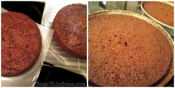 Cider Cake hot from the oven by BakeThisCake