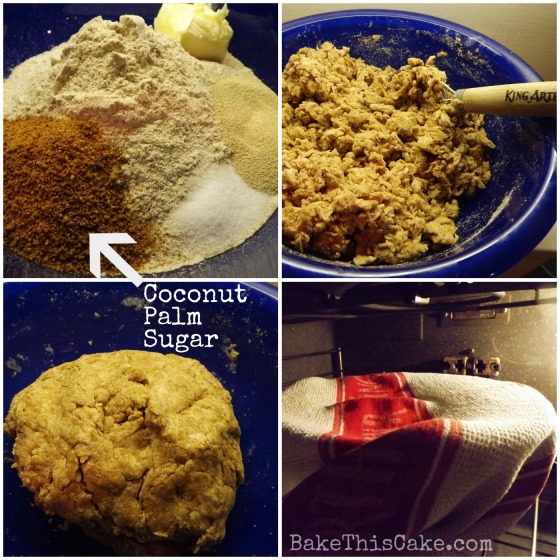 Coconut Palm Sugar in cinnamon yeast dough by BakeThisCake