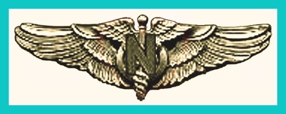 Flight Nurse Badge