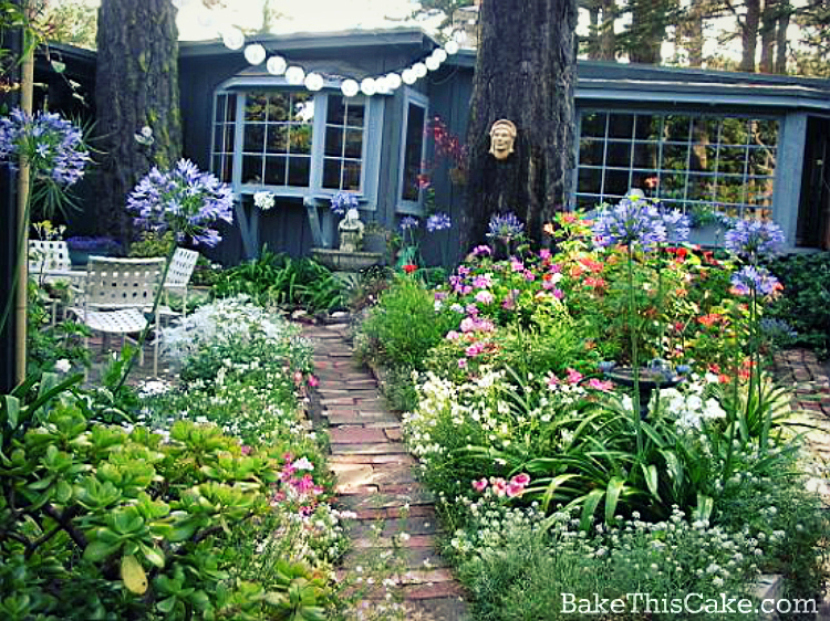 Carmel cottage garden by bakethiscake