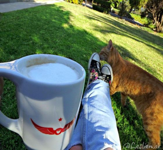 Intelligensia coffee on my lawn with my cat Eddie photo by Leslie Macchiarella